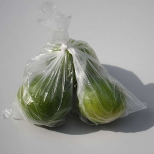 picture of polythene bag